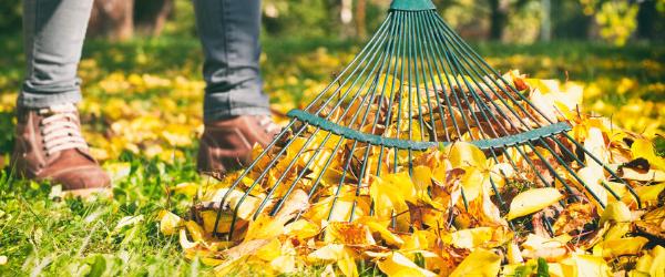 7 tips om je tuin winterklaar te maken! - cortenstalen producten